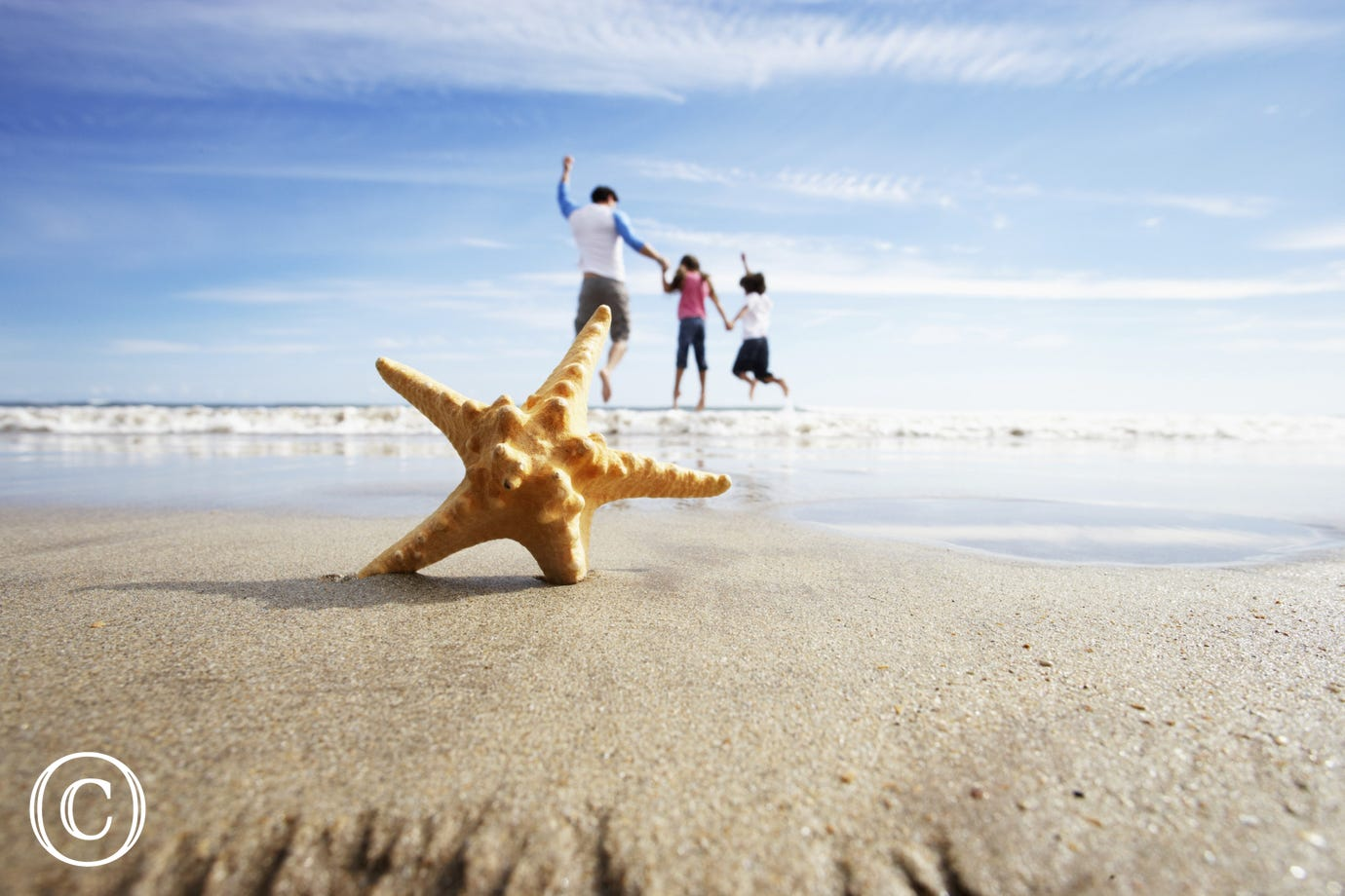 Beach with starfish and family in the background